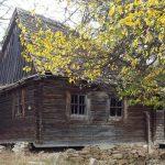 Untote und Werwölfe in Transilvanien
