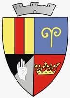 Wappen von Salişte (Großendorf)