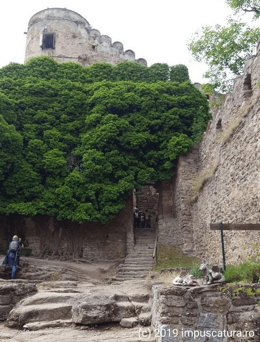 Aufgang zur Höhenburg Kynast